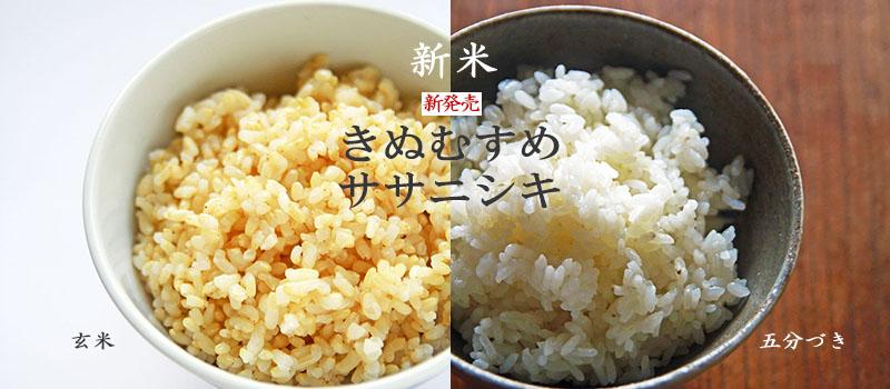 国産、岡山県産コリアンダーシード。無農薬無肥料の自然栽培