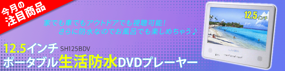LIVZA 12.5インチ ポータブル 防水DVDプレーヤー SH125BDV